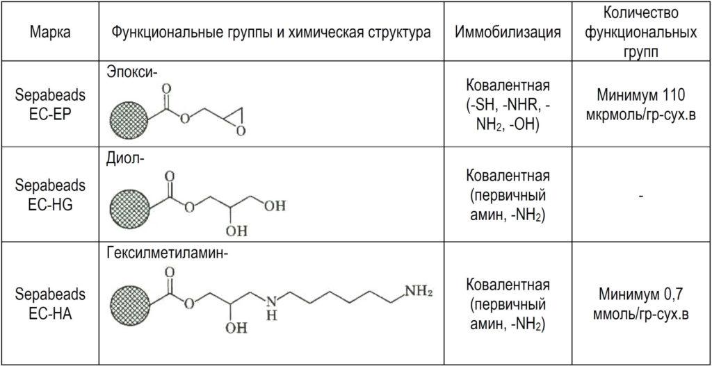 Иммобилизация ферментов ионообменными смолами
